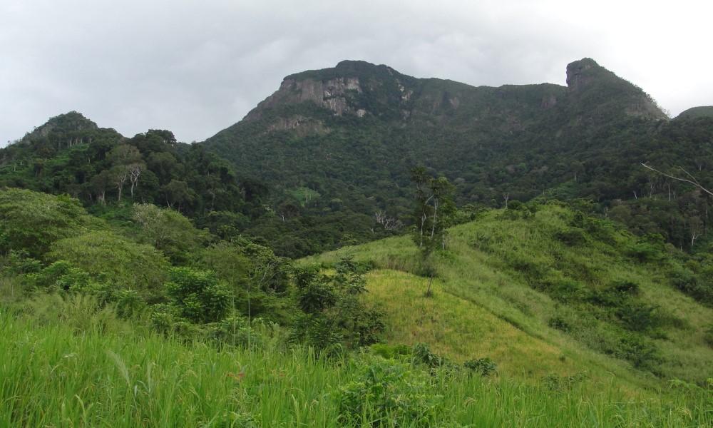 Part of Makirovana-Tsihomanaomby Massif showing deforestation in foreground (photo by Chris Birkinshaw)